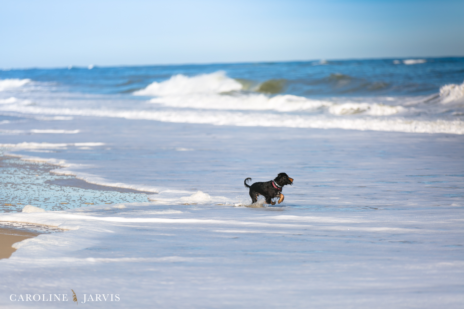 New Year, New Things - Beach Adventures by Caroline Jarvis Photography