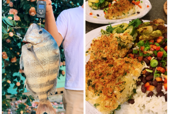 Garlic Parmesan Crusted Sheepshead Recipe :)  The best meal we've ever eaten!